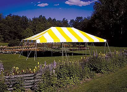 Where to find CANOPY 20X30 PARTY SET UP in Kalamazoo
